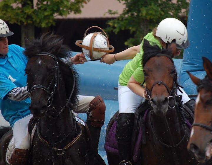 arrachage au horse-ball