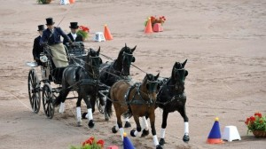 Résultats des Jeux Equestres Mondiaux 2014 attelage
