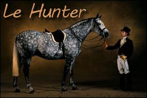 Le Hunter, une discipline à part entière