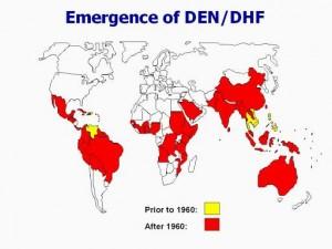 Dengue répartition