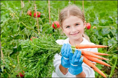 Les légumes et les enfants