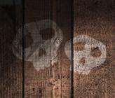 Critique littéraire : Les secrets de Skeleton Creek