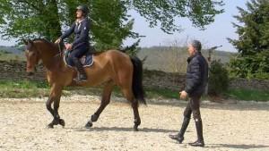 débuter l'équitation