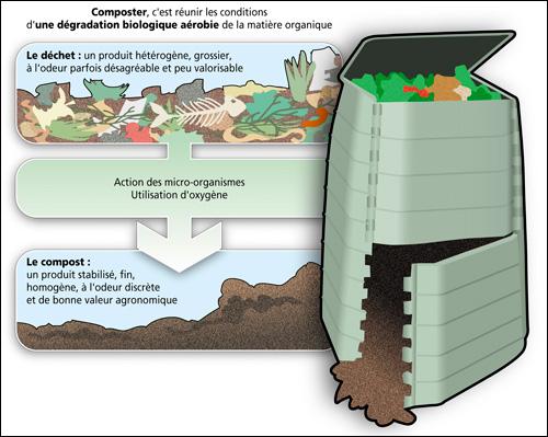 Le jardinage et votre compost