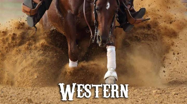 Les disciplines western