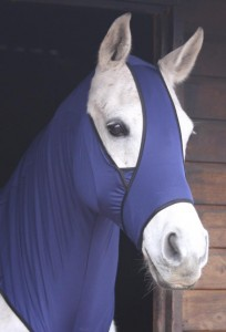 protection cheval insectes