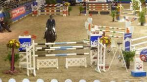 les métiers en rapport avec le cheval