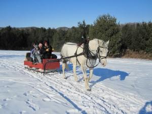Randonnée à cheval dans la neige