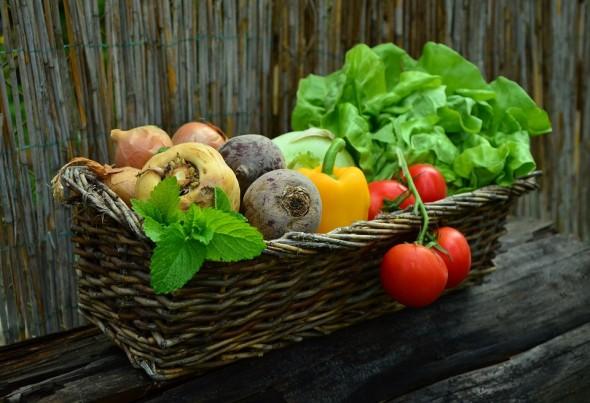 Choisir des légumes de saison
