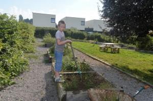 Travail au jardin partagé