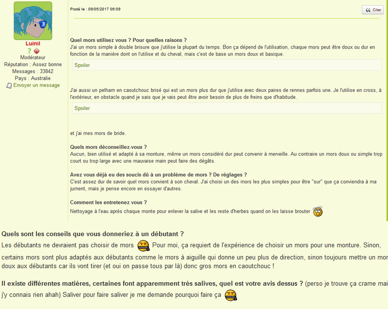 Témoignage de Luinil