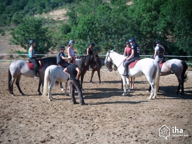 Les métiers du cheval : moniteur d'équitation