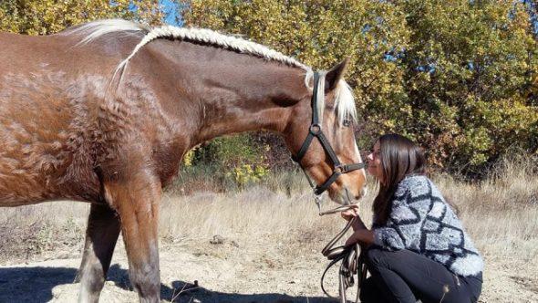 Le jeune cheval et sa jeune propriétaire