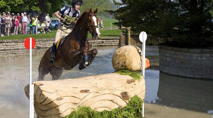 Le concours complet d'équitation (CCE)
