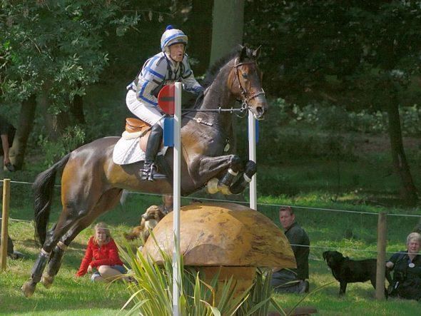 Concours complet d'équitation CCE cross