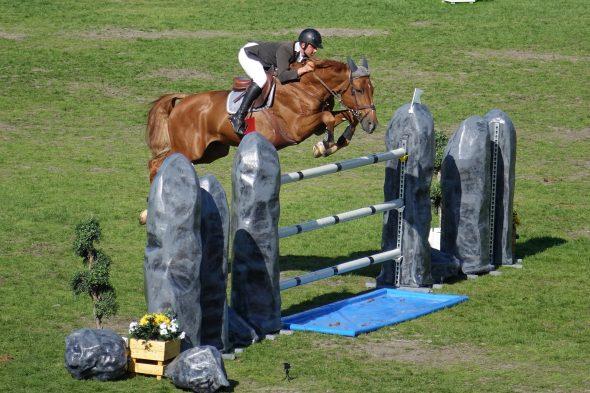 Discipline équestre saut d'obstacles CSO