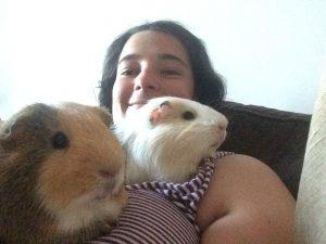 Très sociable, le cochon d'inde aime se faire caliner