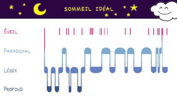 Cycle de sommeil idéal