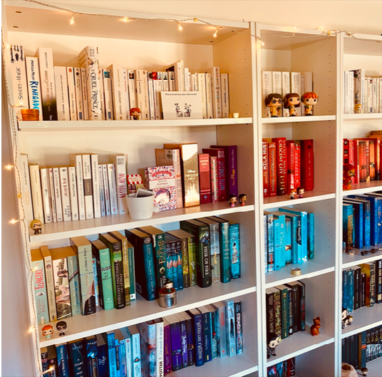 6 façons originales de ranger ses livres
