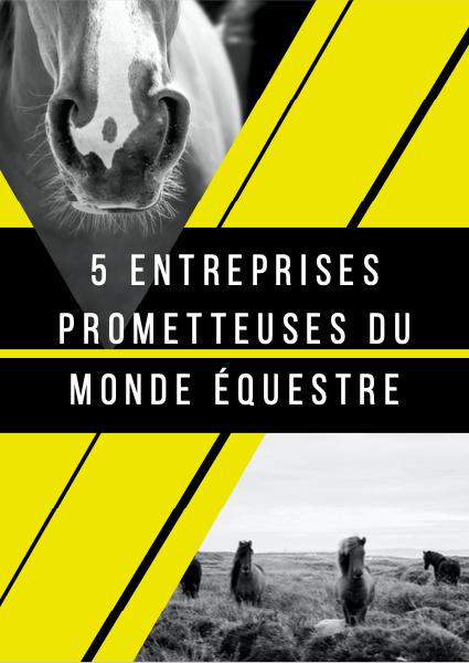 5 entreprises françaises prometteuses du monde équestre