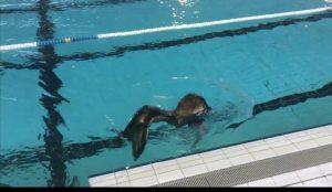 Mermaiding nage sirène